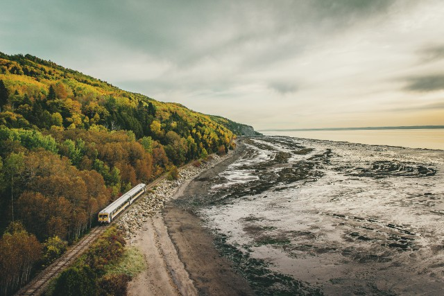 En longeant la Route du Fleuve, passé l'entrée de Charlevoix, vous croiserez...