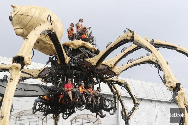 La presse a pu rencontrer Kumo l'araignée devant... (Patrick Woodbury, Le Droit)