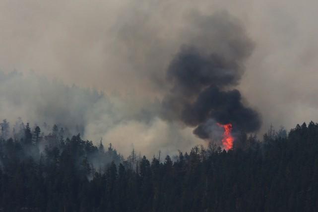 Des feux de forêts en Colombie-Britannique.... (PHOTO Ben Nelms, archives REUTERS)