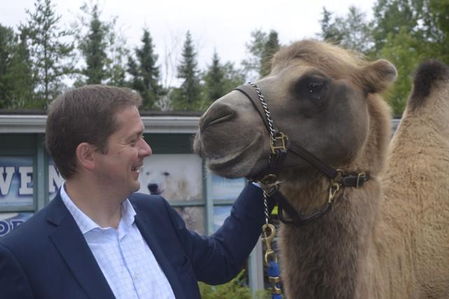 Le chef du Parti conservateur, Andrew Scheer, a... (Le Progrès, Louis Potvin)
