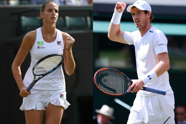 Karolina Pliskova et Andy Murray... (Photos archives Agence France-Presse)