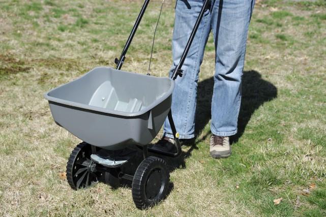 Appliquer de la chaux sur une pelouse ne... (123rf/imagemax)
