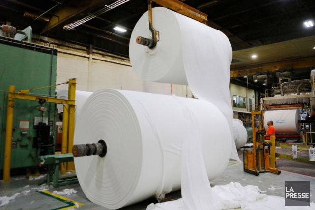 Cascades (TSX: CAS) a annoncé jeudi un investissement de 80 millions $ US dans... (Archives La Presse)