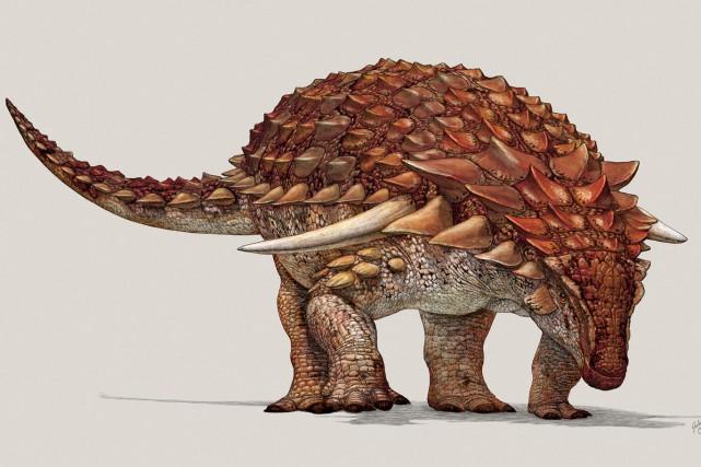 La peau du nodosaureétait dotée d'un mécanisme de... (PHOTO AFP)