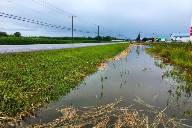 Des anciens terrains agricoles à Saint-Cyprien-de-Napiervilleont été inondés.... (PHOTO CATHERINE LEFEBVRE, COLLABORATION SPÉCIALE)
