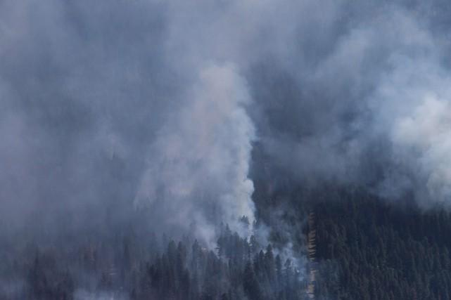 Les feux de forêt en Colombie-Britannique ont brûlé depuis le 1eravril une... (Photo Darryl Dyck, archives La Presse Canadienne)