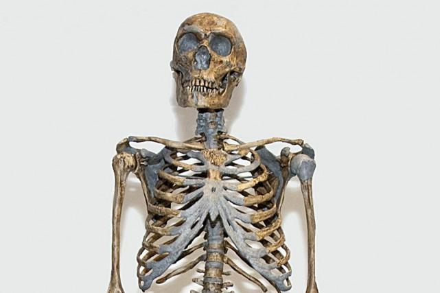 Les Néandertaliens et les Denisoviens, deux anciens cousins des humains, ont... (Photo archives AFP)