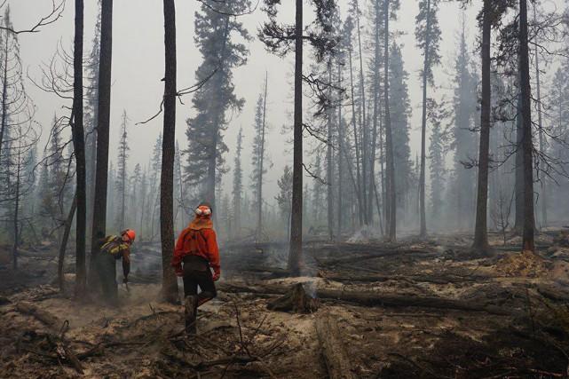 Depuis le mois d'avril, 928 incendies ont été... (PHOTO PC)