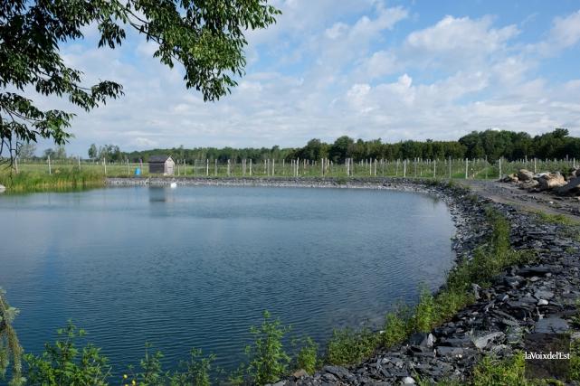 Pierre Côté a fait creuser son lac après... (Alain Dion, La Voix de l'Est)