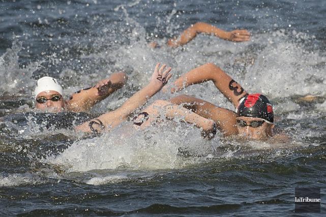 Des nageurs de 13 pays tenteront de dompter... (Archives, La Tribune)