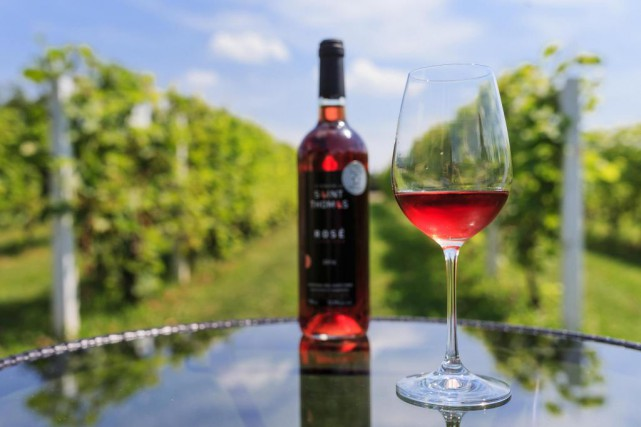Depuis son arrivée au vignoble, Éric Gagnon achangé... (Photo Edouard Plante-Fréchette, La Presse)