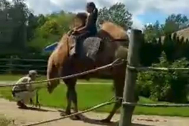 La vidéo, captée le 6 août dernier, a... (capture d'écran)