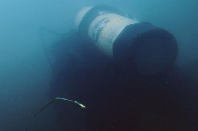 La passion de l'archéologue-subaquatique Aimie Néron l'entraîne dans... (Phot fournie par Télé-Québec)