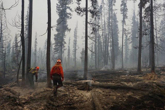 Des dizaines de pompiers forestiers de la Société... (PHOTO PARCS CANADA VIA LA PRESSE CANADIENNE)