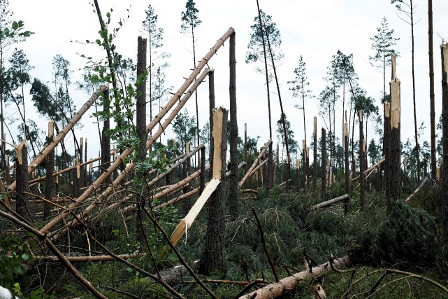 Les tempêtes qui ont touché la Pologne dans... (PHOTO AFP)