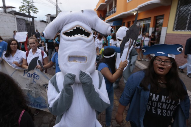 Manifestation sur l'île Santa Cruz, dans les Galapagos,... (PHOTO AFP)