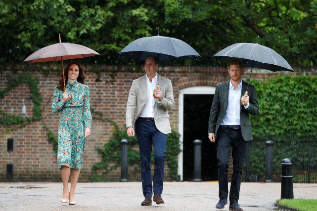Harry, William et sa femme Kate ont visité... (REUTERS)
