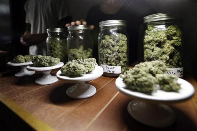 Des variétés de marijuana présentées dans un magasin... (Photo archives La Presse Canadienne)