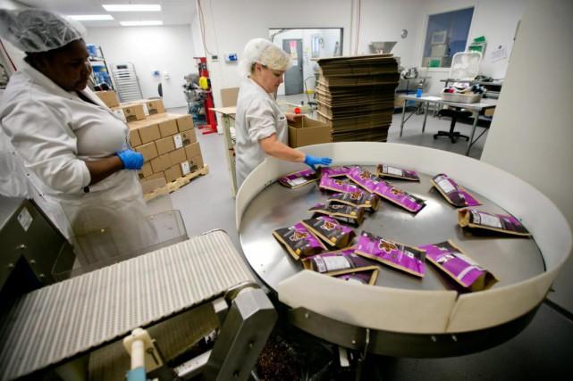 Depuis cinq ans, les ventes de Fourmi bionique... (Photo David Boily, La Presse)