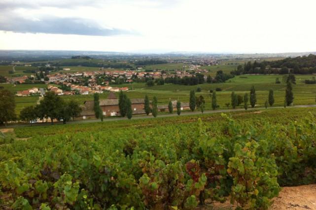 Le plus grand domaine de Beaujolais, Château de La Chaize, a changé de mains... (Photo tirée de la page Facebook)
