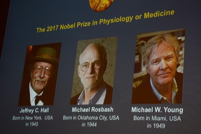 Les lauréats Jeffrey C. Hall, Michael Rosbash et... (Photo Jonathan Nackstrand, Agence France-Presse)