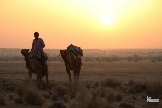 Au coeur du Thar, contrée aride du nord-ouest... (PHOTO SYLVAIN SARRAZIN, LA PRESSE)
