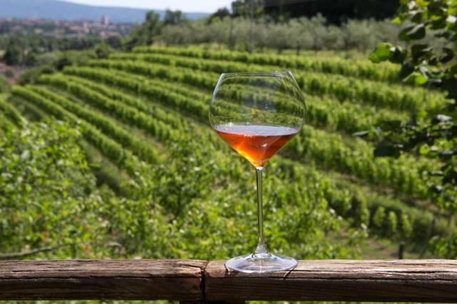 Le vin orange estun blanc macéré avec les... (Photo Robert Skinner, La Presse)