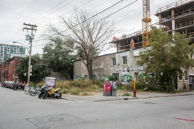 C'est sur ce terrain de Griffintown que se... (Photo Olivier PontBriand, La Presse)