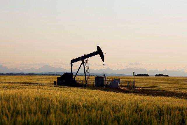 EDC dit que les exportations d'hydrocarbures auront augmenté... (REUTERS)