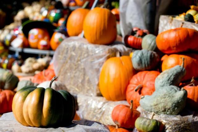 À l'Halloween, la citrouille fait l'unanimité. Mais dans l'assiette, elle ne... (Photo François Roy, La Presse)