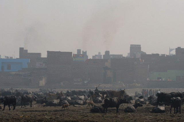 Située à 150 kilomètres à l'est de Delhi, dans... (PHOTO MONEY SHARMA, ASSOCIATED PRESS)