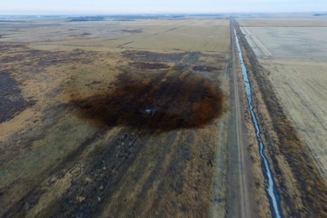 Après la fuite des 5000 barils de pétrole... (REUTERS)