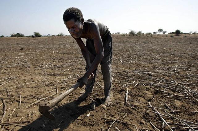 Le trois quart des personnes souffrant de malnutrition... (Photo GIANLUIGI GUERCIA, archives AFP)