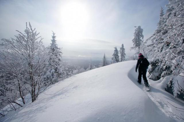 L'utilisation de raquettes à neige ne date pas... (PHOTO DAVID BOILY, ARCHIVES LA PRESSE)