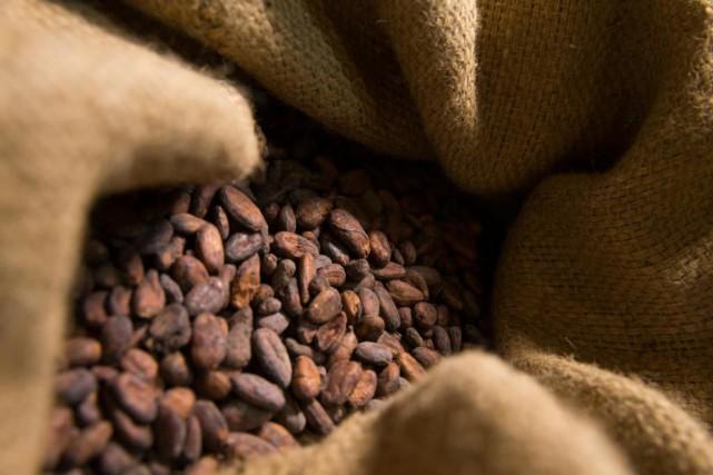 Miser sur des cadeaux à saveur de cacao... (PHOTO IVANOH DEMERS, ARCHIVES LA PRESSE)