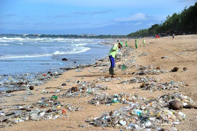 Les monticules qui s'accumulent sur les plages nuisent... (SONNY TUMBELAKA, AFP)