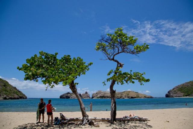 La Guadeloupe est une destination qui ravit les... (Photo David Boily, Archives La Presse)