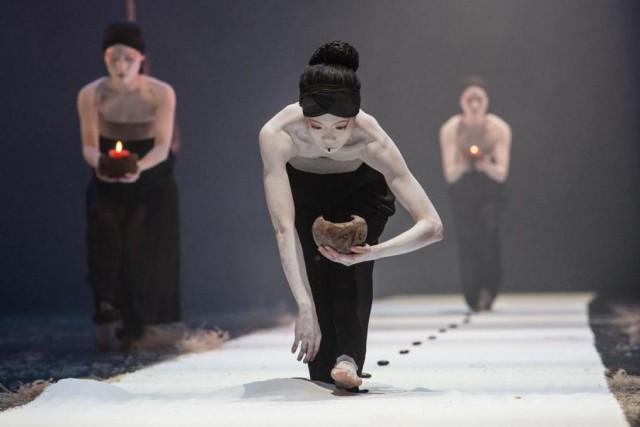 The Eternal Tidesest exécuté dans un rythme très... (PhotoMichel Cavalca, fournie par Danse Danse)