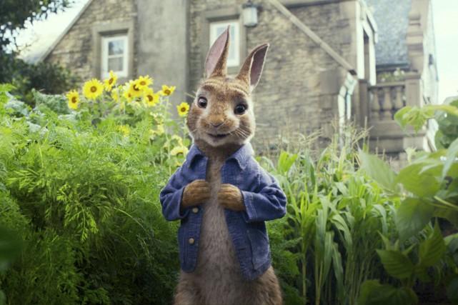 Le filmPeter Rabbit, qui mélange acteurs réels et... (PHOTO AP)