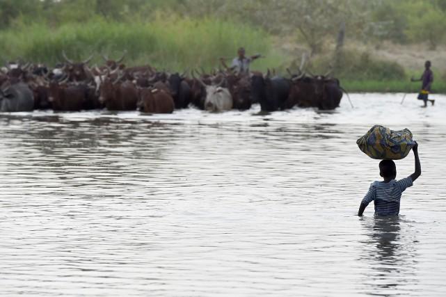 Un garçon traverse le lac Tchad près du... (Photo PHILIPPE DESMAZES, archives Agence France-Presse)