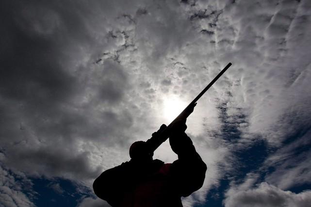 L'accès aux armes à feu fera partie des... (Sean Kilpatrick, archives PC)