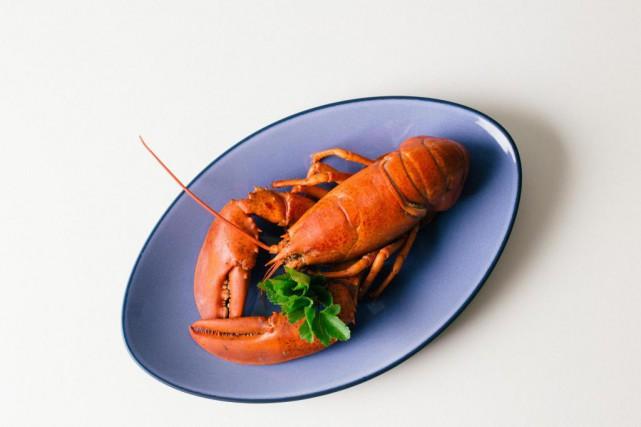 La saison du homard s'ouvre en mai.... (photoNigel Quinn, collaboration spéciale)