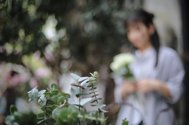 Vous gardez en souvenir ce magnifique jardin d'Andalousie avec ses murs blancs...