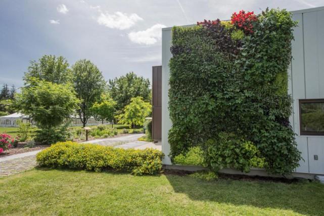 Le mur végétal est situé à l'entrée du... (Photo Edouard Plante-Fréchette, La Presse)