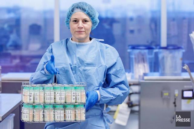 Dans le laboratoire aseptisé d'Héma-Québec, la manipulation du... (Photo Alain Roberge, La Presse)