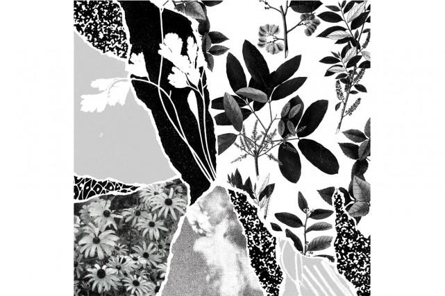 Mon herbier du monde entierdePonctuation... (Image fournie par Bonsound)