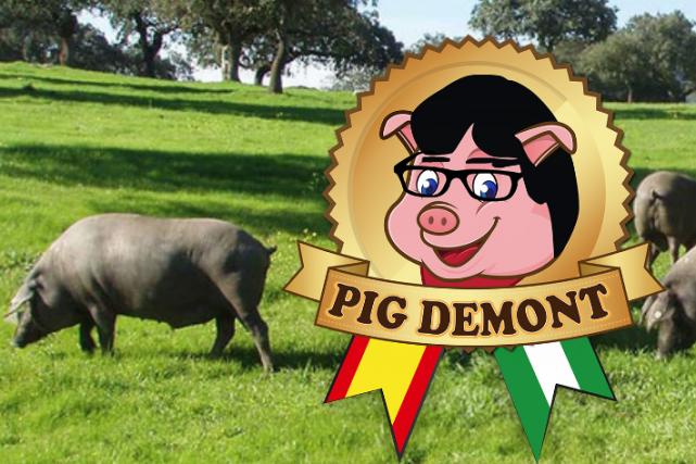 L'avocat de Carles Puigdemont, qui attend en Allemagne... (Capture d'écran du site web de Pig Demont)