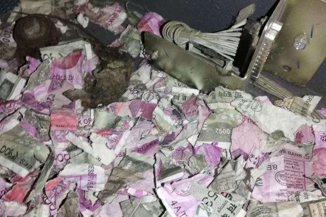 Les rats ont grignoté une somme d'un montant... (Photo Agence France-Presse)