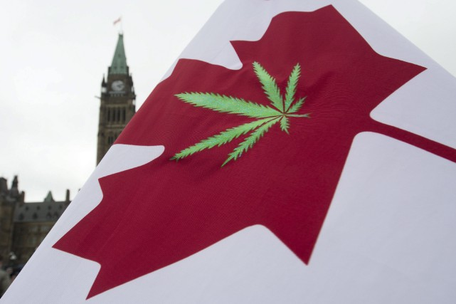 La marijuana sera légale au Canada à compter... (Photo Adrian Wyld, archives PC)
