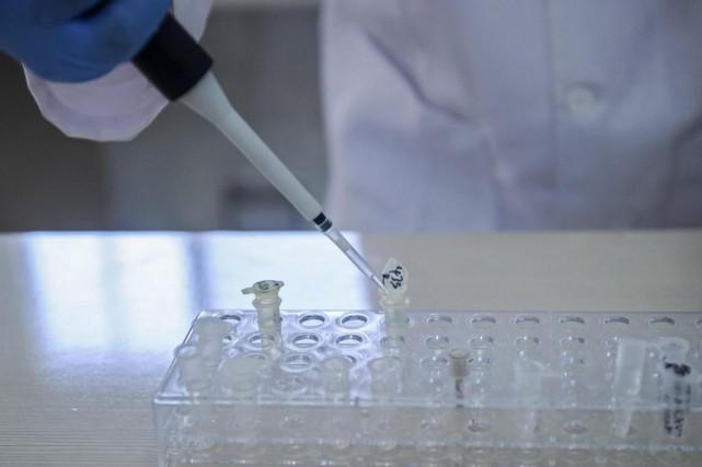Les traqueurs d'ADN du Earth BioGenome Project ont... (PHOTOMOHAMED ABDIWAHAB, ARCHIVES AGENCE FRANCE-PRESSE)